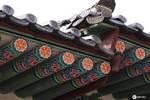 韓國昌德宮,世界文化遺產之旅