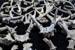 宁波发现距今8000多年遗址 比河姆渡还早千年