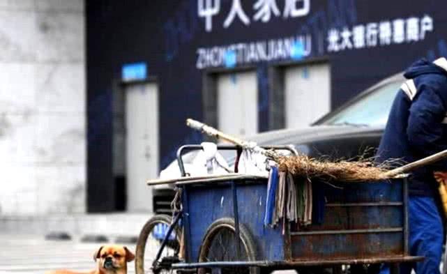 原创 环卫工天天出门都带着狗,看到狗狗的显示,路人纷纷竖指赞扬