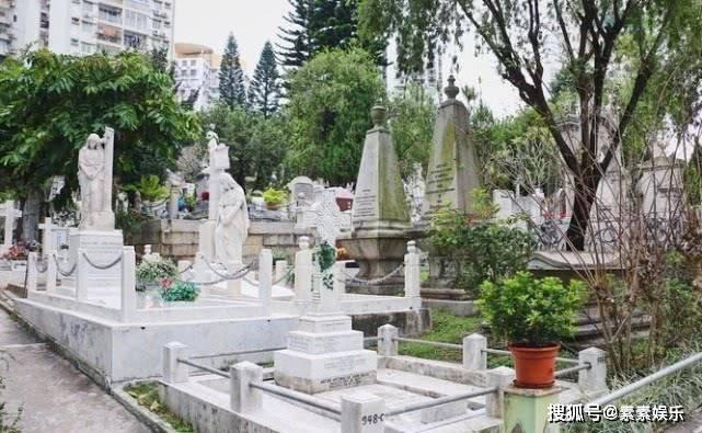 墓地 比較