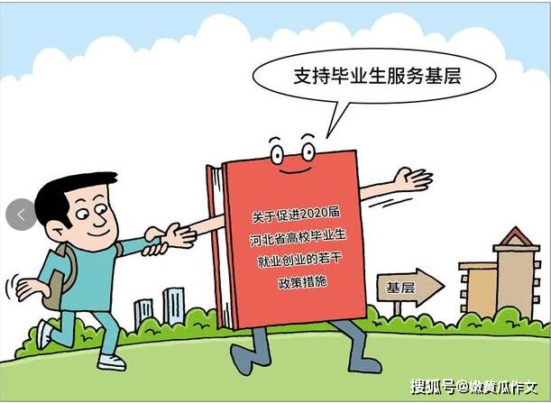 """河北省为大学毕业生开辟新岗位,实为政府""""千里送鹅毛"""""""
