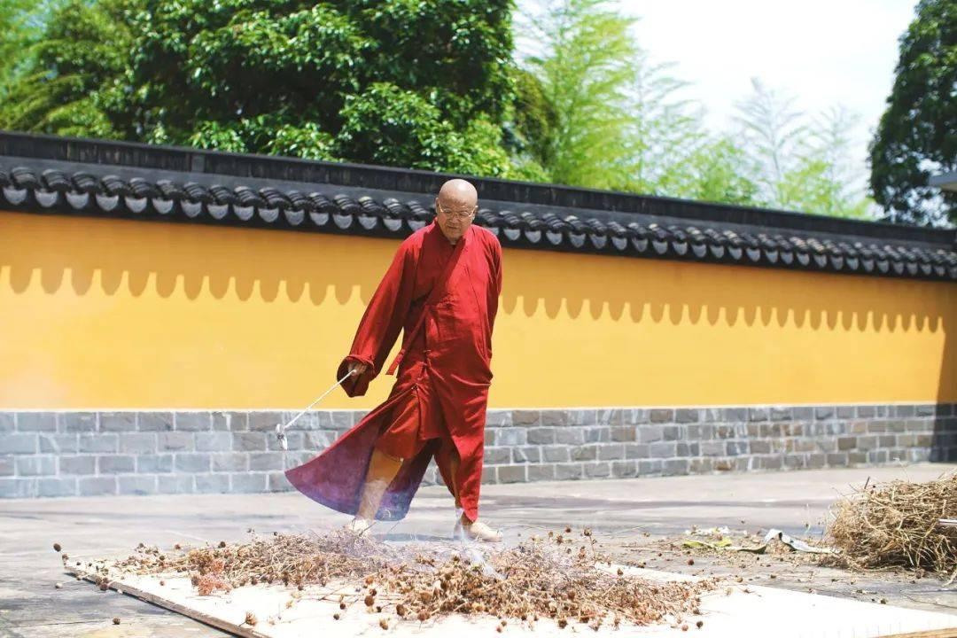 大学老师33岁时卖房出家造庙:人生如果只满足物质,太低级