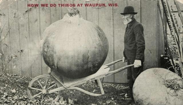 """百年前美国式""""夸诞风""""宣传画:一个土"""