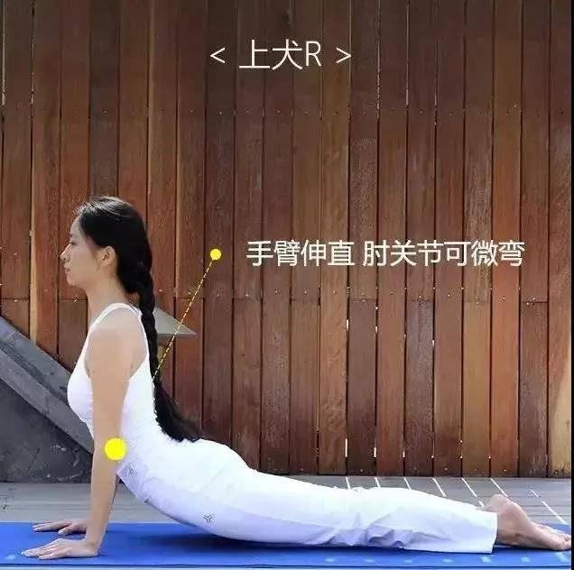 为什么练瑜伽那么久没效果?抓住要点,避免错误体式才能事半功倍_身体 知识百科 第10张