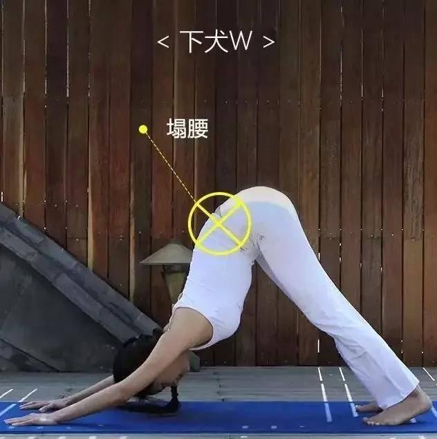 为什么练瑜伽那么久没效果?抓住要点,避免错误体式才能事半功倍_身体 知识百科 第2张
