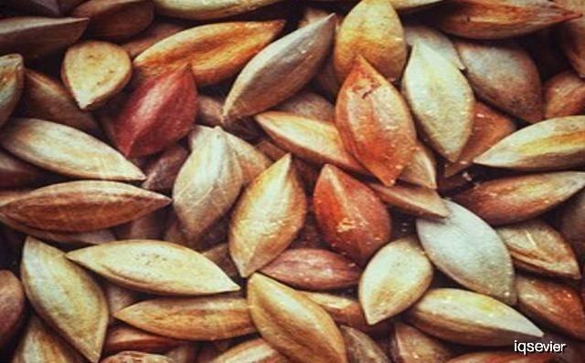 原创产后经常吃这几种食物可以美容养颜清除体内垃圾