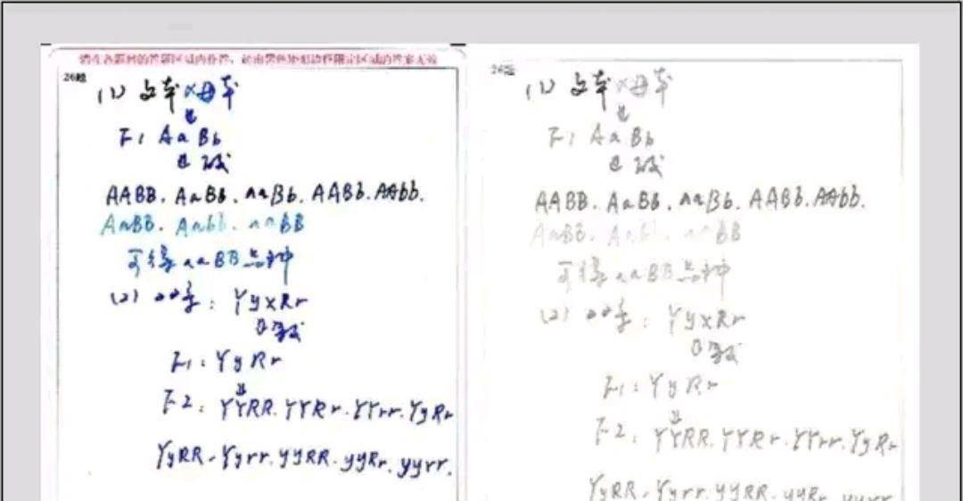 还有6天就要高考!电脑阅卷系统如何规范答题,让学生多考20分?