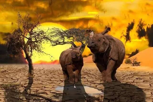 人口大灭绝_中国古代历史上的14次人口大灭绝