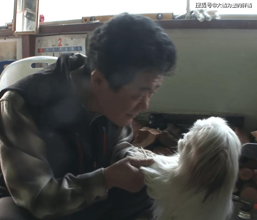 """原创 爷爷被锁在冷藏室,无奈向爱犬呼救,狗狗立马闻声而来""""救了""""他"""