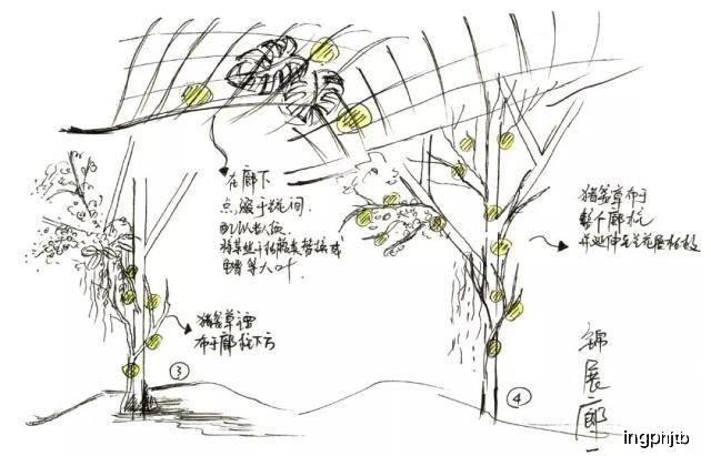 地圖 簡筆畫 手繪 線稿 640_411