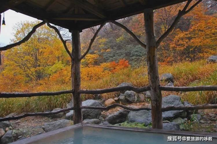 这个秋天最会享受的人,都在这几个地方边泡温泉边赏红叶~