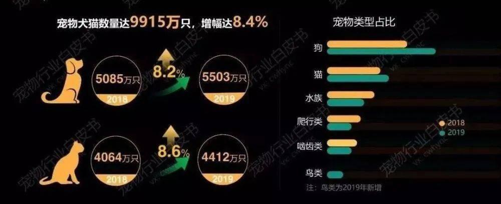 """中国人养宠物数量达1亿,""""宠物+科技""""将带来新的行业洗牌"""