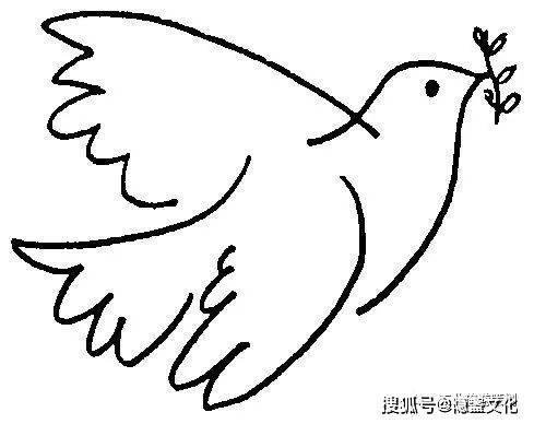 和平鸽简笔画 幼儿园和平鸽简笔画