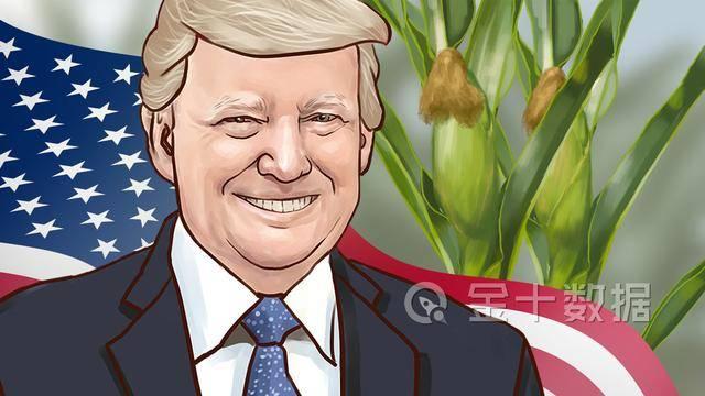 玉米涨价30%中美达成史上最大订单意味着什么