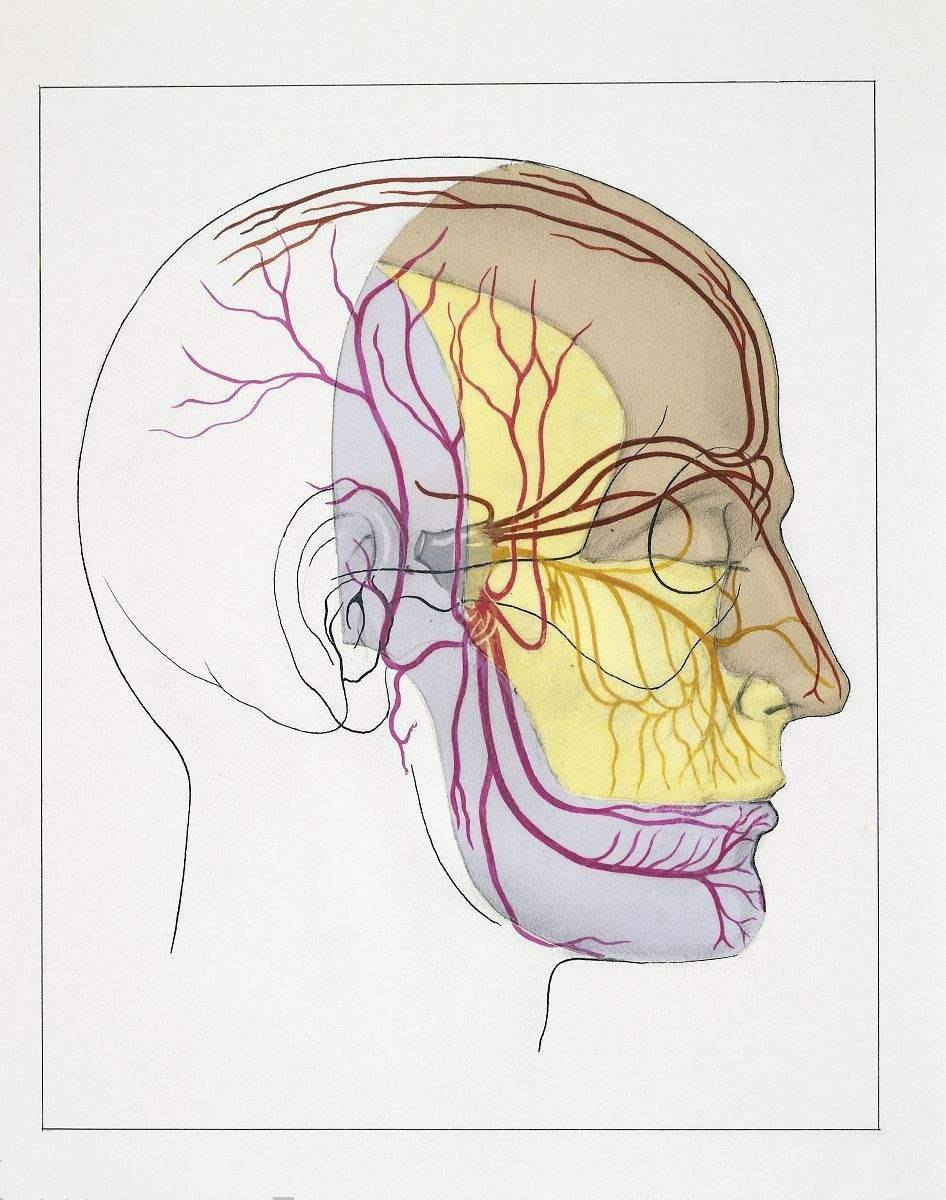 卡马西平与奥卡西平治疗三叉神经痛的疗效和不