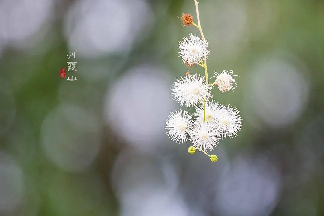 原创             在中国最美七大丹霞之首,竟然藏着一个700年历史的绝美古村