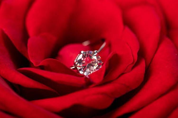十月中旬 红色蜻蜓四大星座 爱情运动反击战 美女 牵手爱情