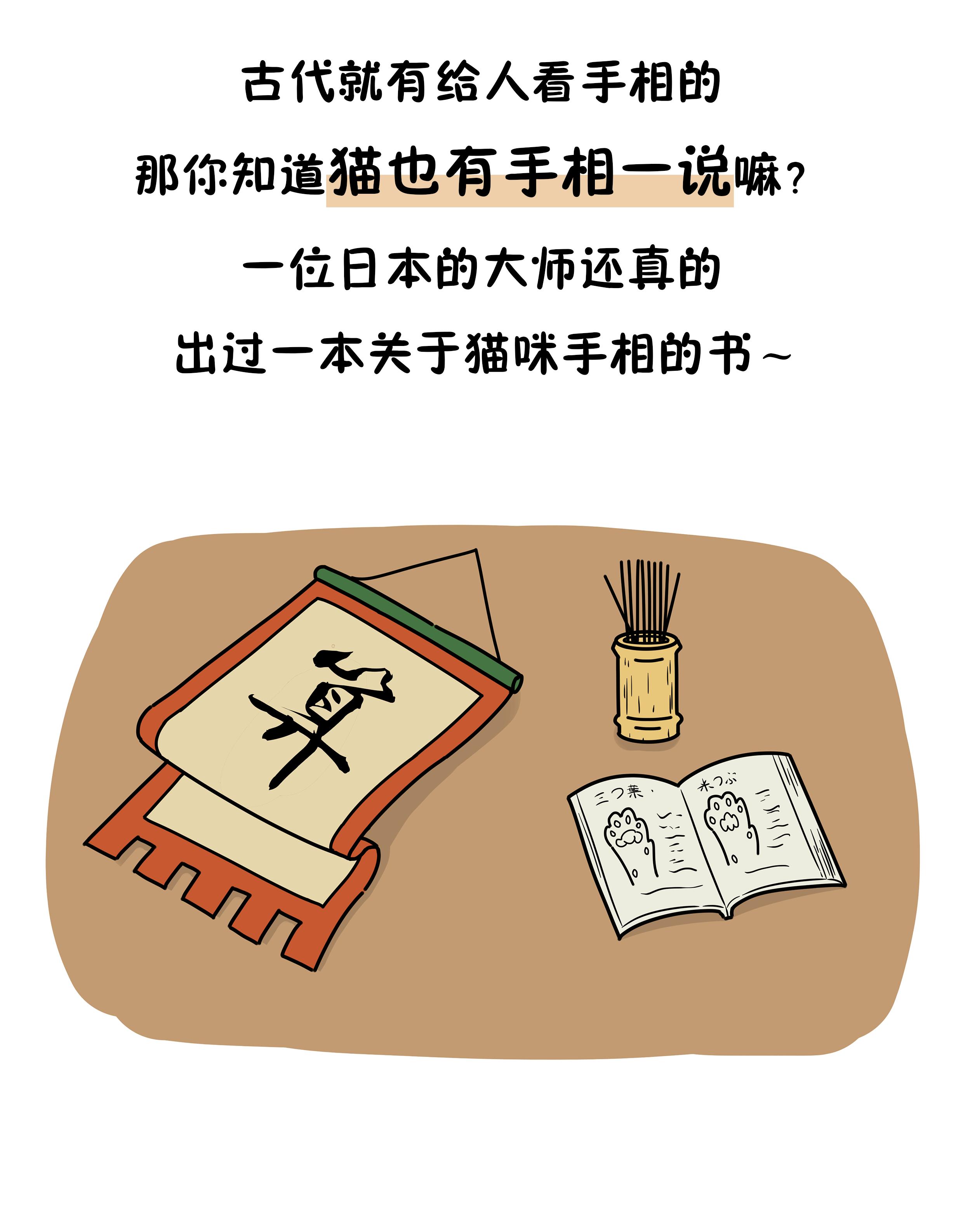 """官方回应""""综艺嘉宾采摘西藏珍稀植物"""":已参与考察"""