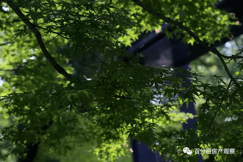 中凯曼荼园-上海中凯曼荼园楼盘详情-中凯曼荼园千万别错过了!