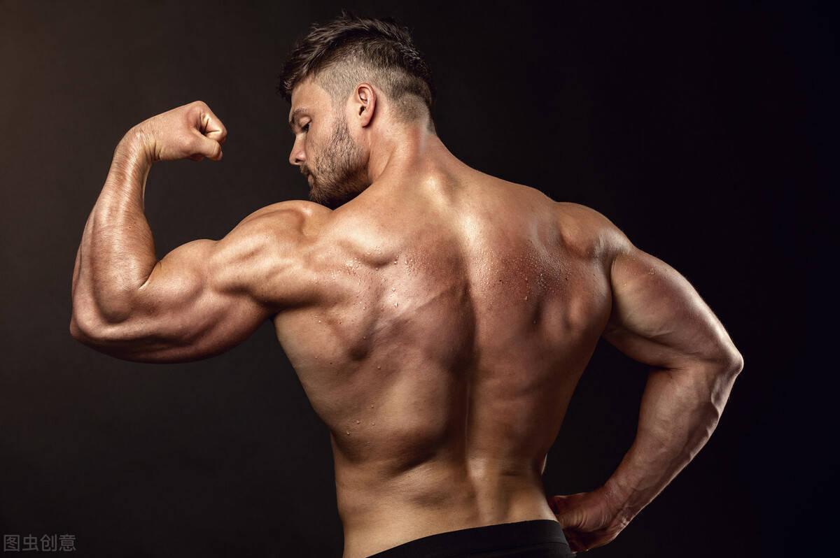 4个增肌知识点扫盲,提高肌肉维度,避免脂肪堆积,你了解多少?