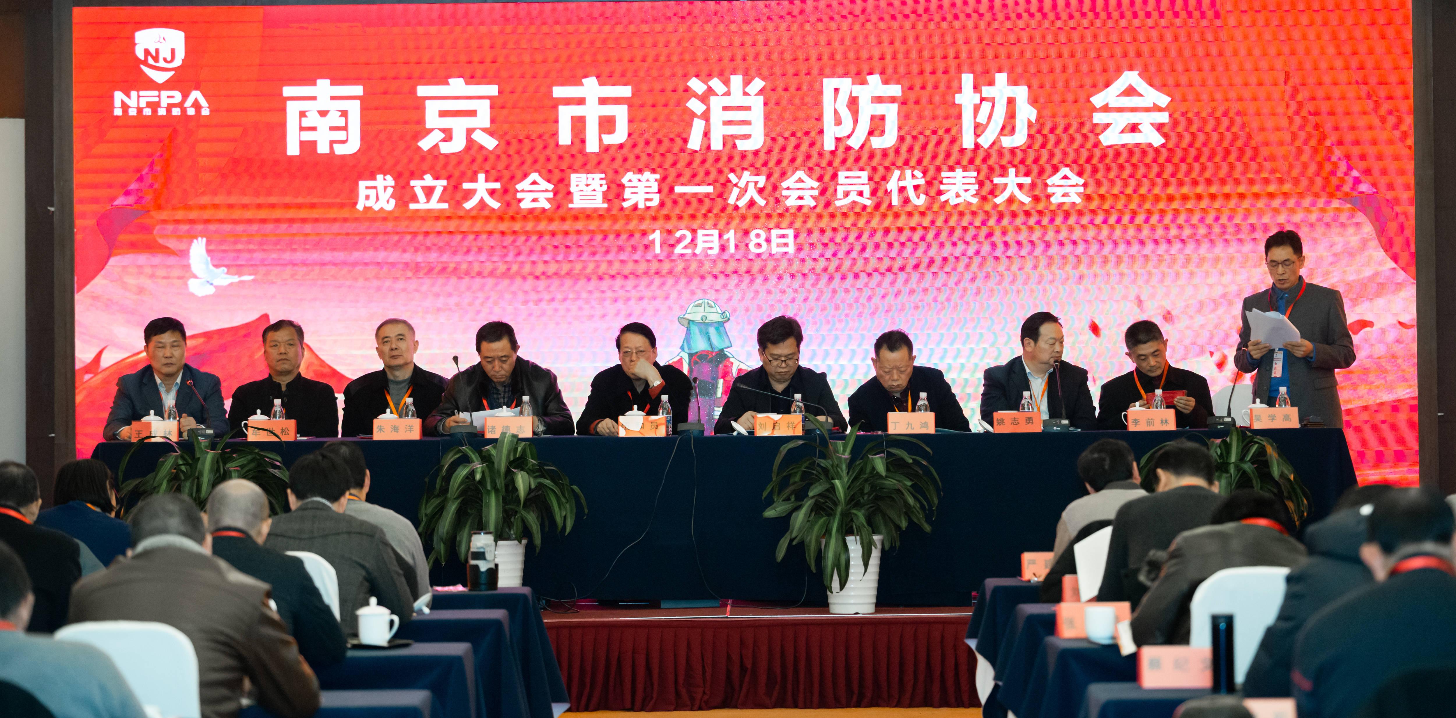 南京市消防协会成立