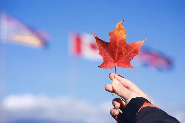 加拿大高性价比项目——曼省留学移民