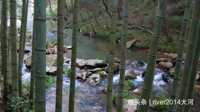 安徽天柱山的避暑胜地,一条峡谷中藏有十几条瀑布