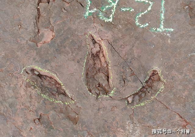福建首次发现恐龙存在的证据