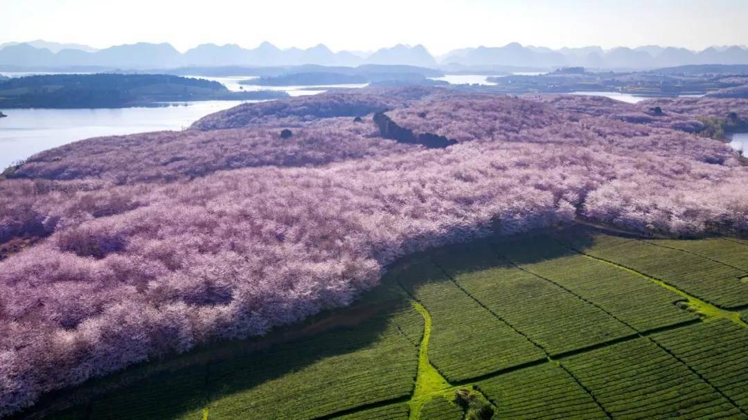 贵州省村庄与农房风貌建设管控路径研究