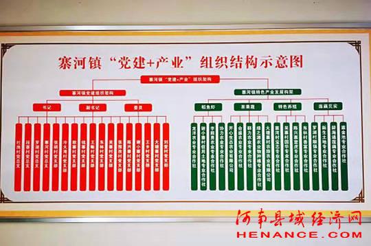 光山县寨河镇:建设党建引领主导产业展厅 突出党建引领谋划产业发展
