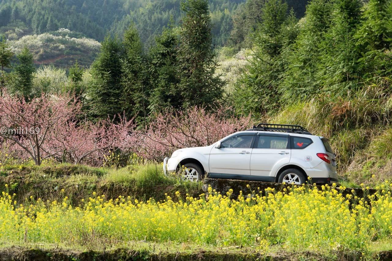 原创性最差的四款国产SUV外观亮丽,但问题不断