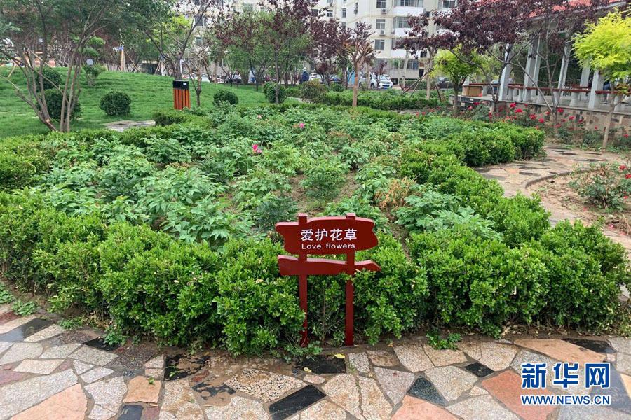 """河北:老旧小区改造 """"面子""""""""里子""""都很美"""
