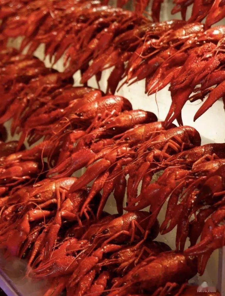 盘点杭州小龙虾自助,两三百就能无限量吃到爽