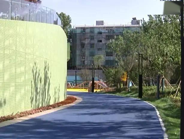 这是离市中心最近的运动公园!体育总监会给您