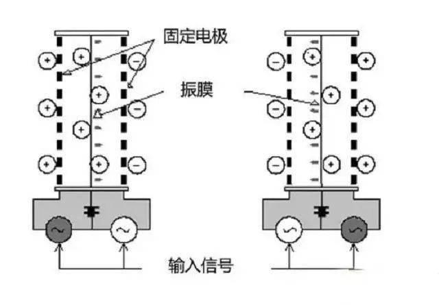 抗静电膜是什么原理_白带是什么图片