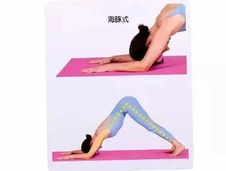 初学者一定要知道,这25 个常见瑜伽动作细节必须牢记 减肥窍门 第17张