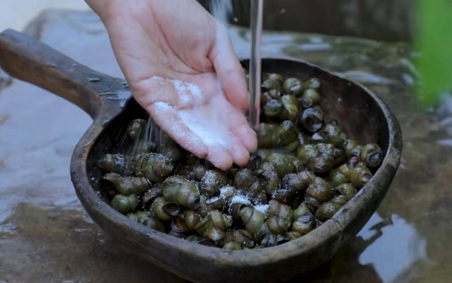 """""""螺蛳""""将列为二级保护动物,还能好好吃螺蛳粉吗?"""