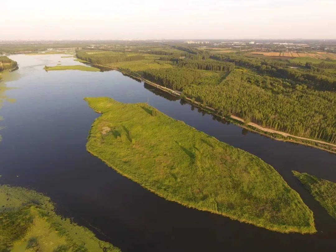 景观cad水系_景观水系_园林水系景观