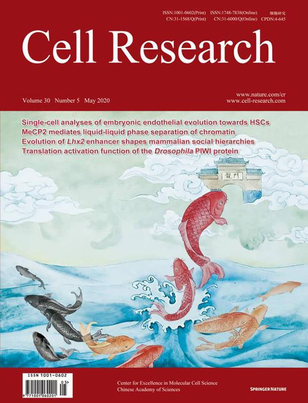 影响因子破20!中国创办的《细胞研究》成国际顶尖学术期刊