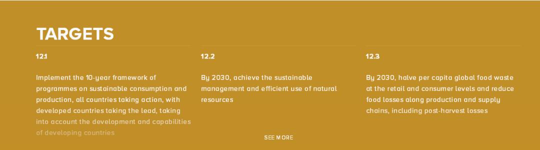 联合国发布《2020年可持续发展目标进展报告》