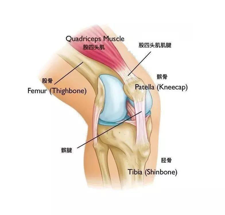 练瑜伽尤其要注意这几个细节,膝盖才不会受伤!