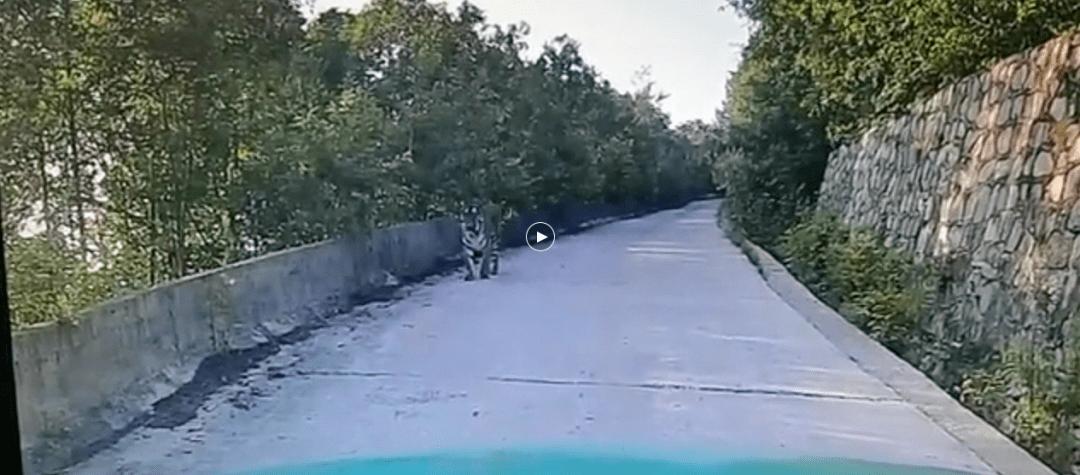 可怕!的哥开车时乘客突然大叫一声 司机往前一看立马掏出手机