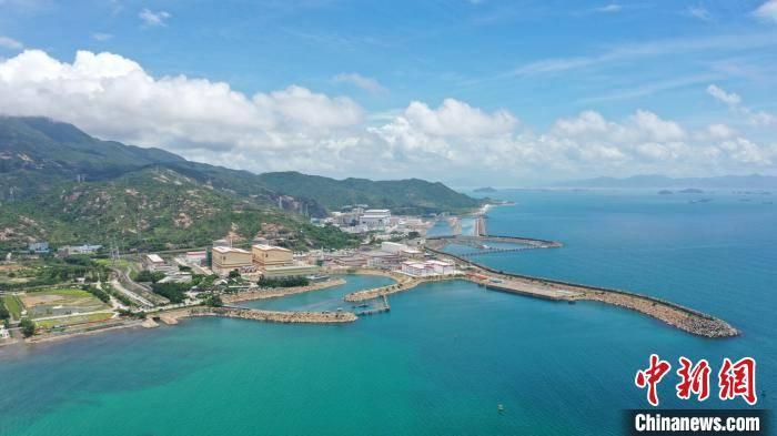 40名保护人员在广东大亚湾核电基地珊瑚保护区见证珊瑚生长