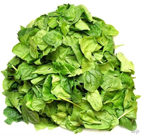 菠菜和油菜都是绿油油的,但是营养价值真不同,看看他们差别在哪