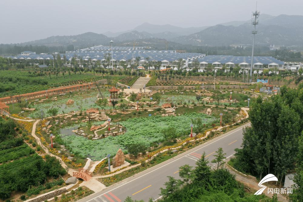 山东:因地制宜科学治理农村生活污水,推进美