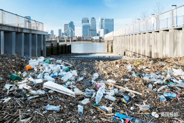 触目惊心!塑料污染有多恐怖?每人一年竟吞下12万塑料碎片...