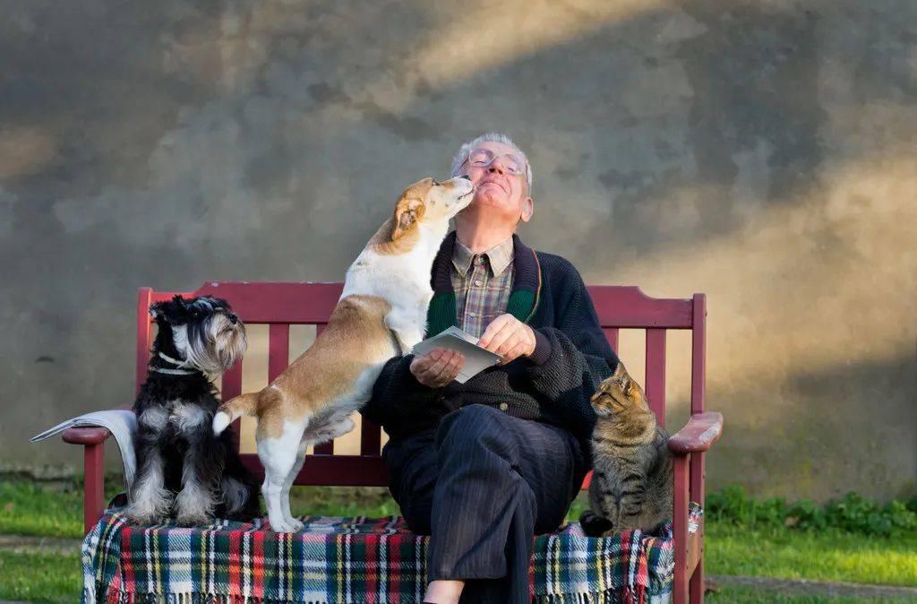 每个养宠物的人,都悄悄收获了这7个健康好处