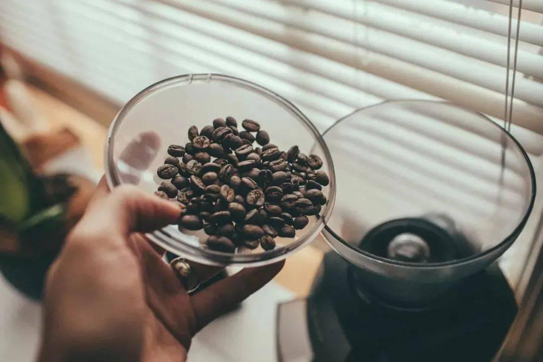 """咖啡研磨,可没想象的困难,10个小知识让你没有""""磨难"""" 试用和测评 第1张"""
