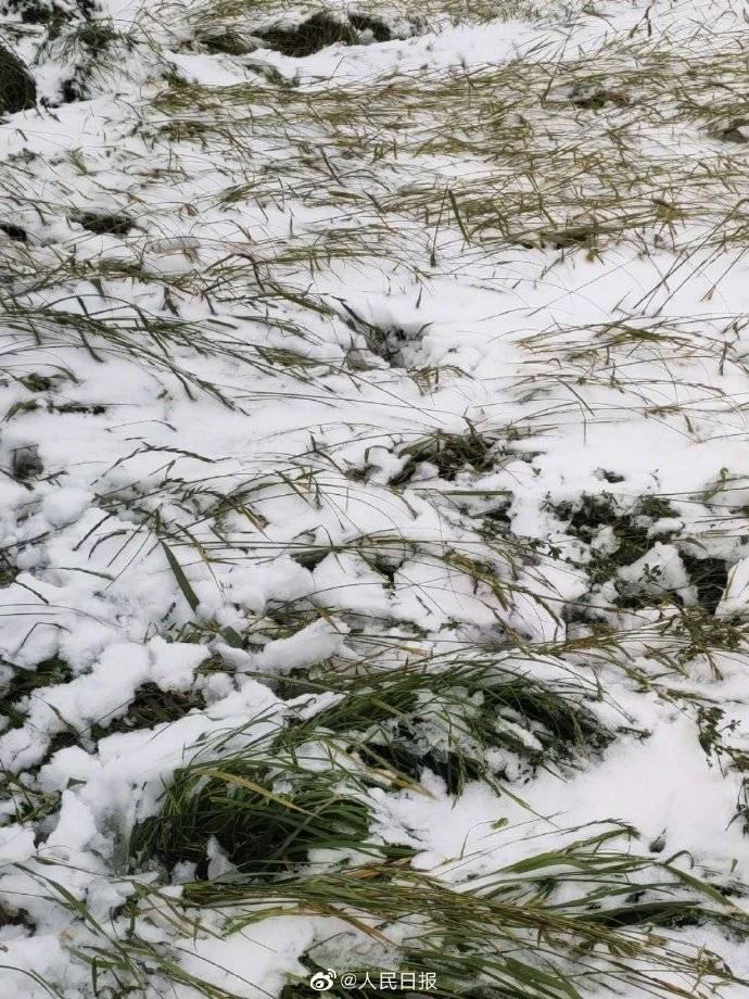 内蒙古赤峰下雪了