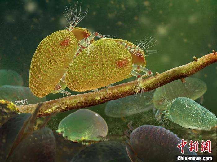 科学家发现1亿年前动物精子化石 为目前已知最早